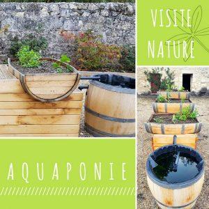 Aquaponie visite nature chateau de la dauphine